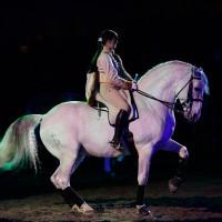 14_02_spett-equestre_maria-d'avella_017