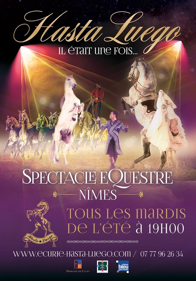 Spectacle equestre nimes hasta luego