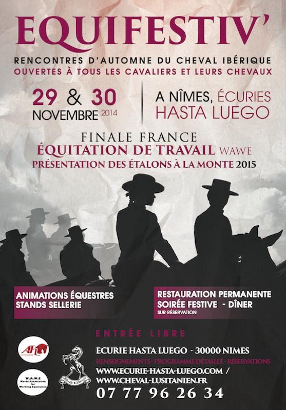 Affiche site web equifestiv 2014