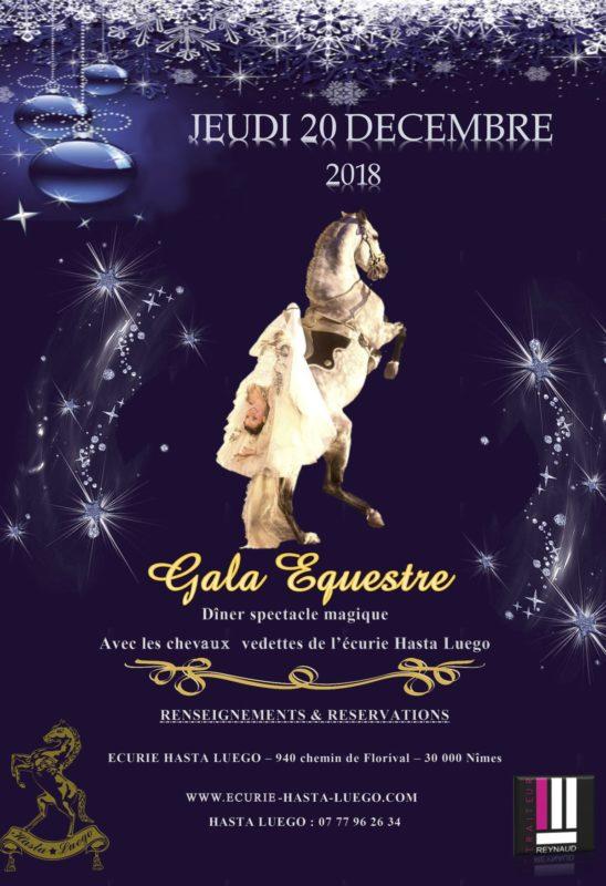 soirée Gala de Noel 2017 - Rectoverso-1- test 1