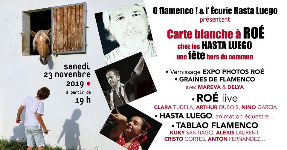 Carte-blanche-a-roe-concert-ecurie-hasta-luego